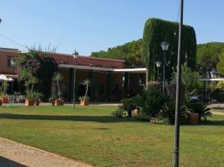 lantana garden1